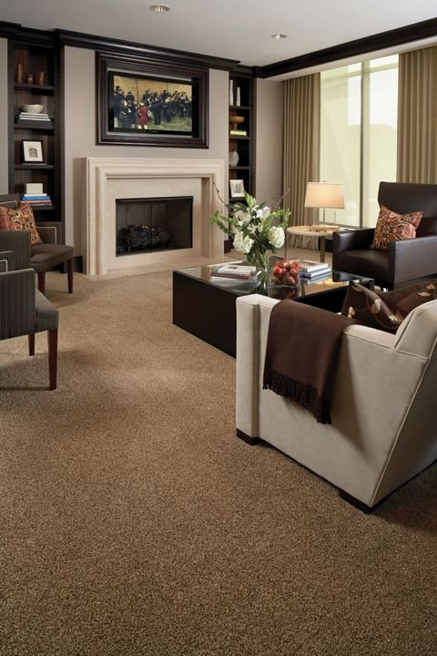 Carpet for Living Room Ideas Beautiful Beber Plush Patterned & Tile