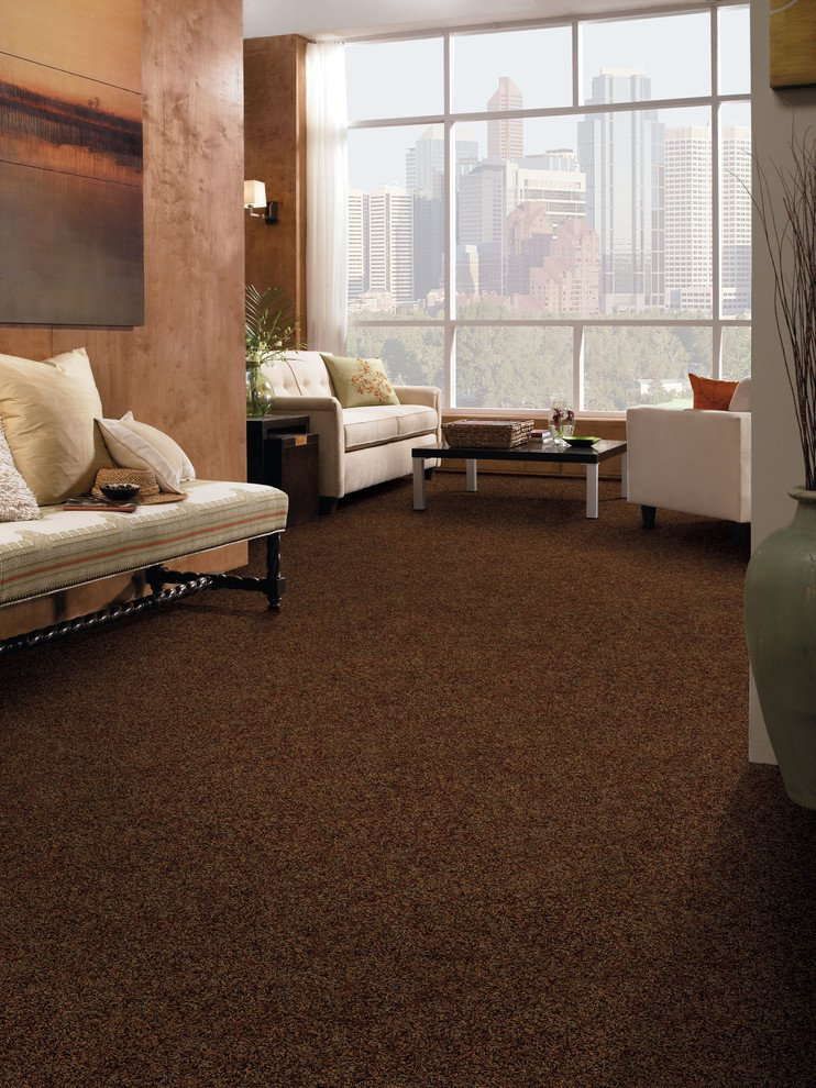 Carpet for Living Room Ideas Fresh Amazing Tuftex Carpet Decorating Ideas