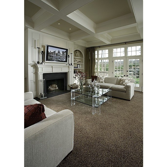 Carpet for Living Room Ideas Fresh Best 25 Dark Brown Carpet Ideas On Pinterest