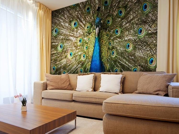 Peacock Decor for Living Room Awesome Decorating Living Room with Peacock Home Decor