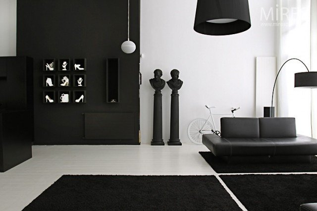 Black and White Home Decor Elegant Black & White Statement Decor