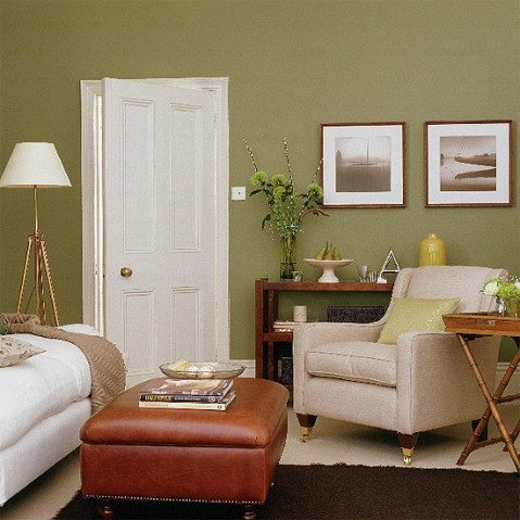 Brown Living Room Ideas Unique Green and Brown Living Room Decor Interior Design