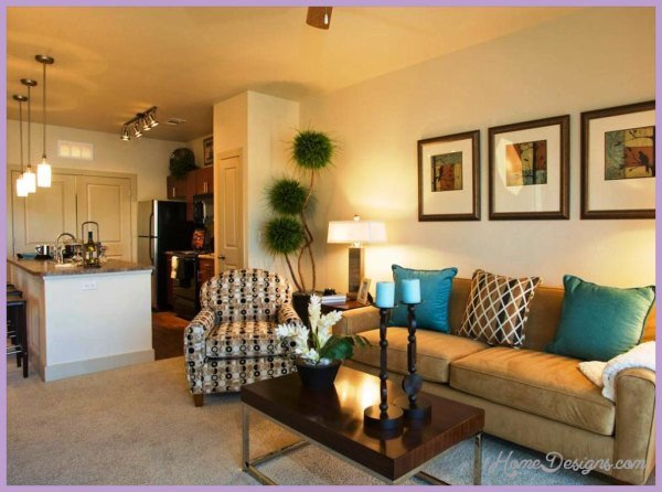 10 Apartment Living Room Design Ideas A Bud 1HomeDesigns