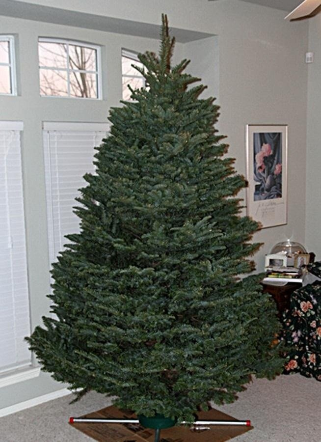 Christmas Decor without A Tree Fresh How to Make Your Decorated Christmas Tree Mathematically Perfect Christmas Ideas Wonderhowto