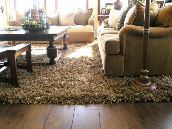 Comfortable Living Room Rugs Luxury Add Luxury and fort to Your Living Room with Shag Rugs – Albanian Journalism