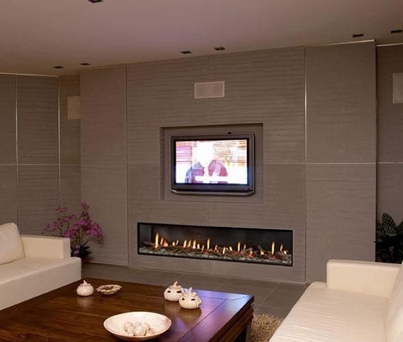 Contemporary Living Room Fireplace New ortal Clear 200 Fireplace Modern Living Room Denver by Home and Hearth Outfitters