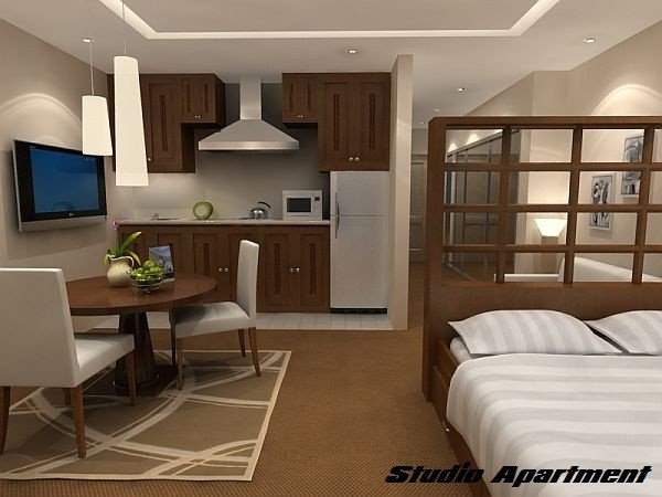 Decor Ideas for Studio Apartments Awesome Maximizing Your Space In A Studio Apartment