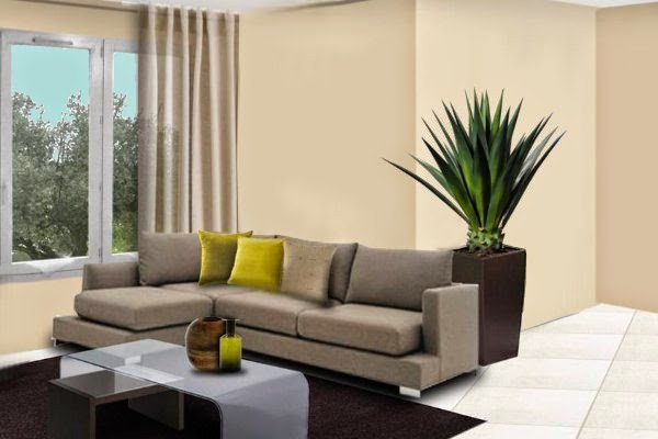 How to Decor Living Room Beautiful How to Decorate Your Living Room with Plants