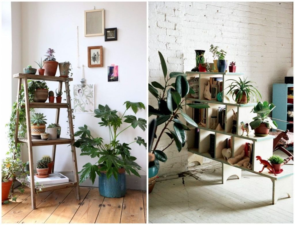 Indoor Plants for Home Decor Best Of 9 Indoor Plants You Can T Kill