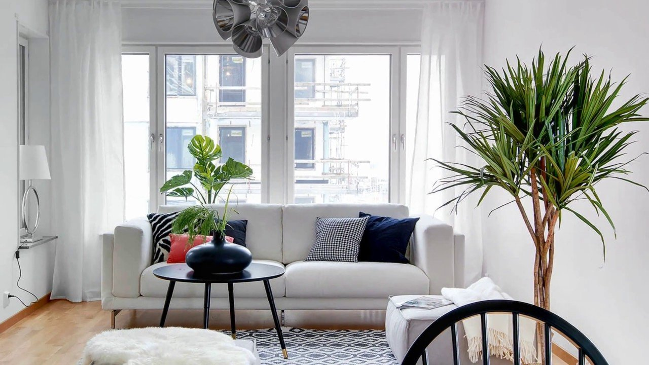 Indoor Plants for Home Decor Fresh Decorating with Indoor Plants