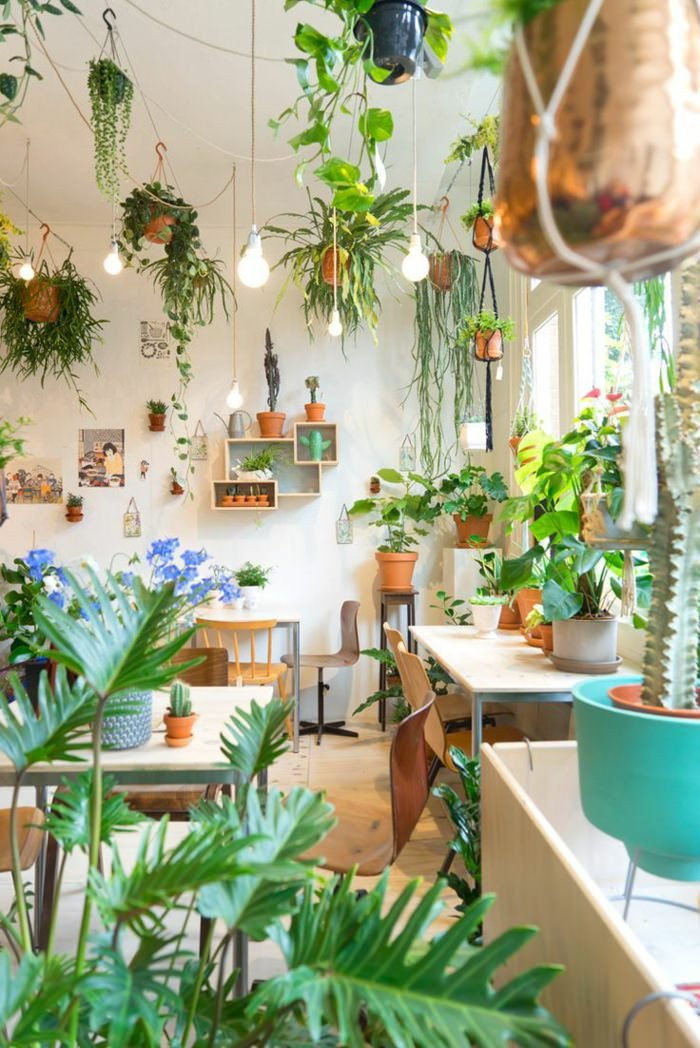 Indoor Plants for Home Decor Luxury 99 Great Ideas to Display Houseplants Indoor Plants Decoration Page 2 Of 5