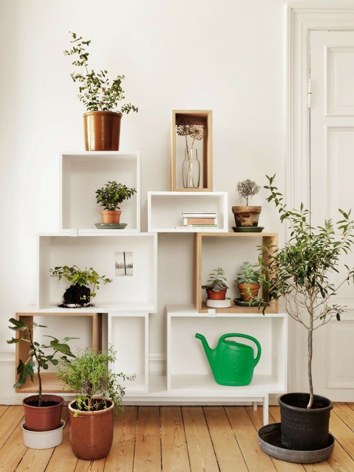 Indoor Plants for Home Decor New 99 Great Ideas to Display Houseplants Indoor Plants Decoration