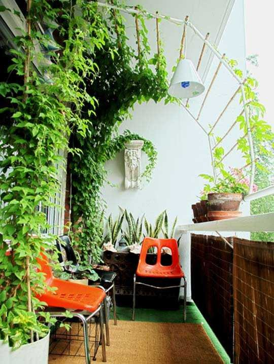 Indoor Plants for Home Decor New Add Glamour to Home Decor with Indoor Plants