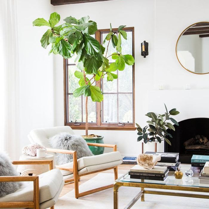 Living Room Ideasfor Small Spaces Lovely 8 Genius Small Living Room Ideas to Make the Most Your Space