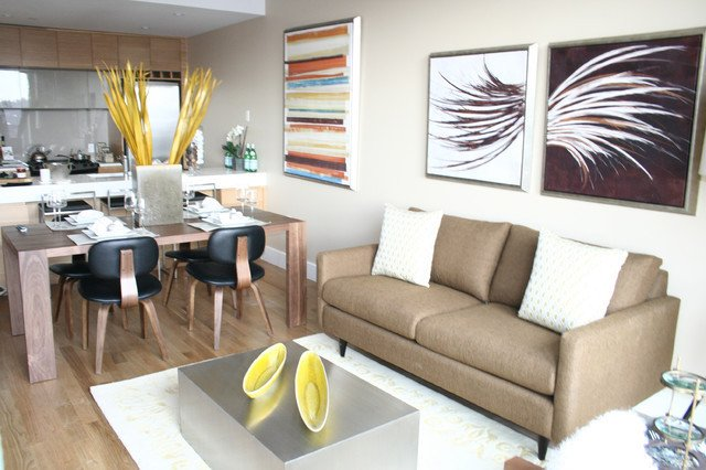 Modern Condo Living Room Decorating Ideas Inspirational Park Slope Brooklyn Condominium Modern Living Room New York by Cathy Hobbs Design Recipes