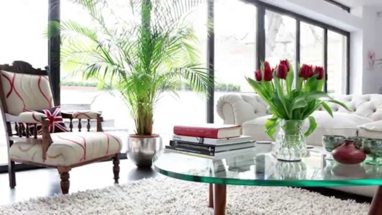 Modern Living Room Decorating Ideas Plant Beautiful How to Make Your Home Look More Expensive More Splash Than Cash