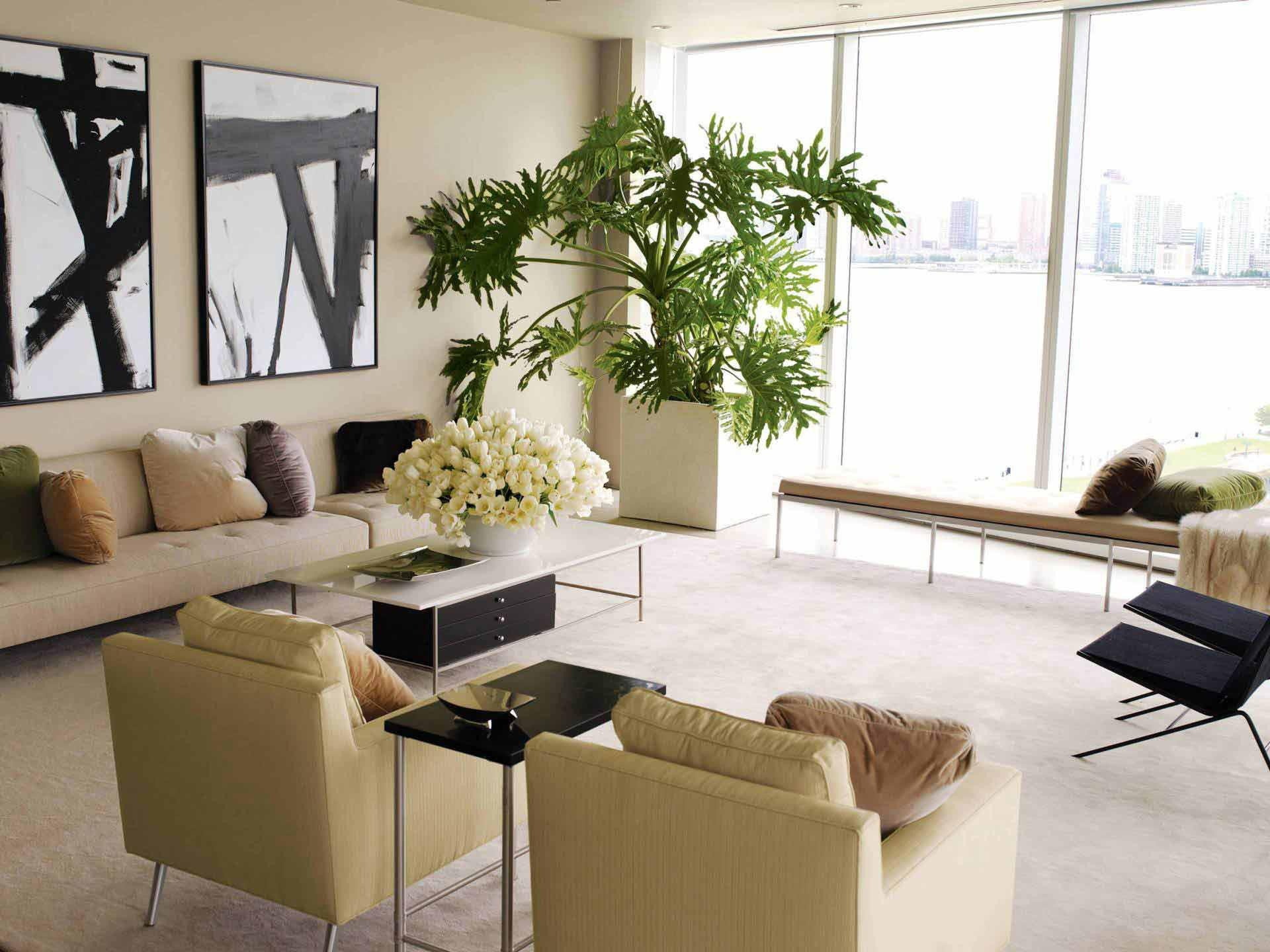 Modern Living Room Decorating Ideas Plant Best Of Decorating Our Homes with Plants Interior Design Explained