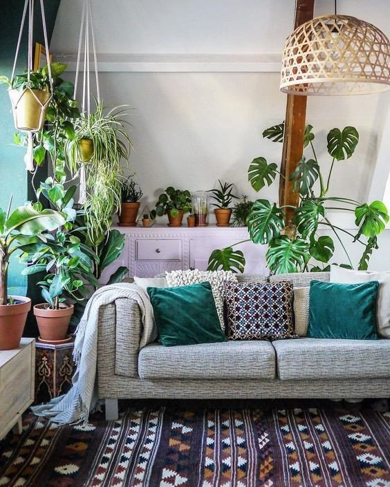 Modern Living Room Decorating Ideas Plant Elegant Wel E to the Jungalow Four Essentials for Dreamy Modern Bohemian Style