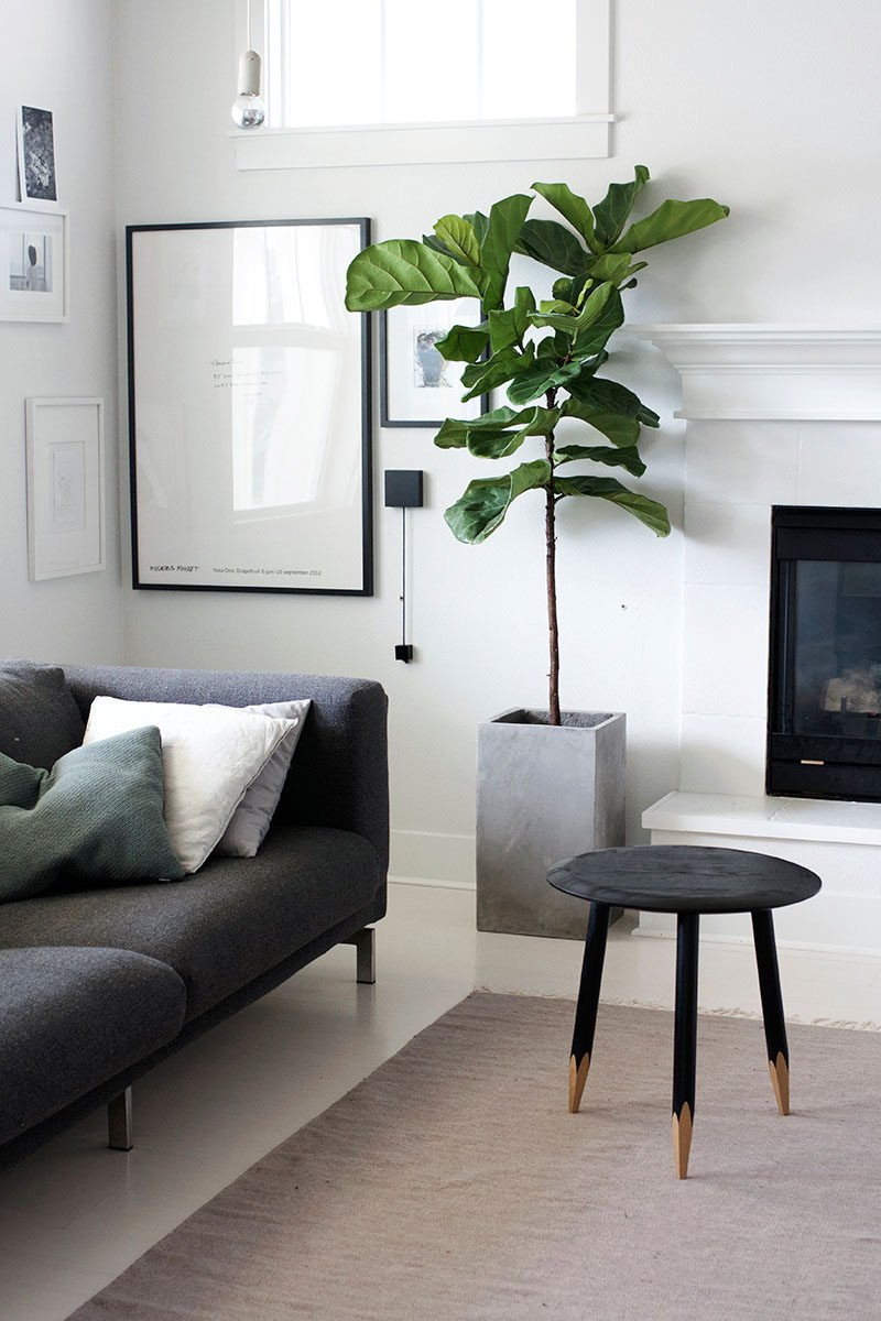 Modern Living Room Decorating Ideas Plant New 7 Living Room Ideas for Designing A Bud