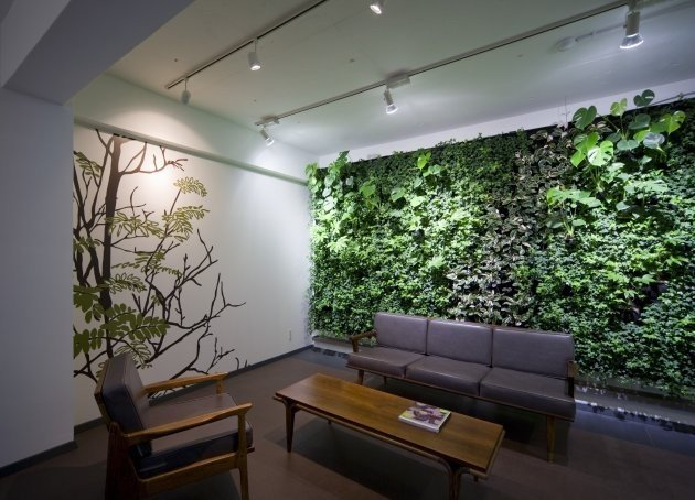 Modern Living Room Decorating Ideas Plant New Green Walls