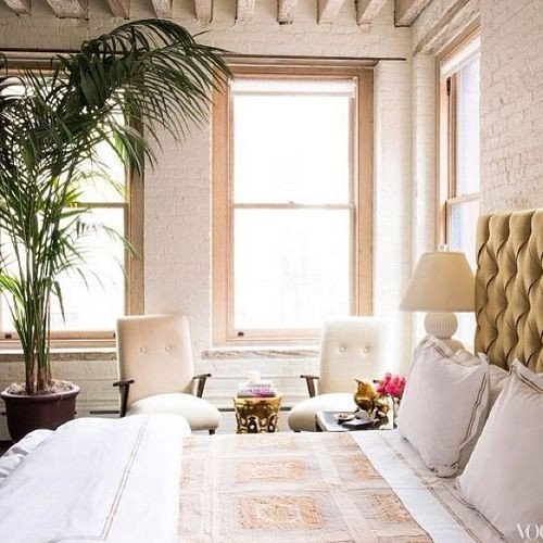 Palm Tree Decor for Bedroom New Bedroom Decorating Ideas A Bud