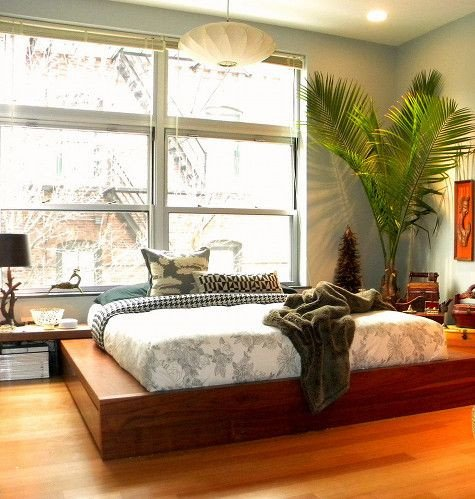 Palm Tree Decor for Bedroom Unique 17 Best Images About Palm Trees On Pinterest