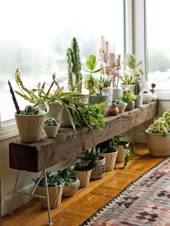 Plant Stand Ideas to Fill Your Living Room Beautiful 12 Extraordinary Diy Plant Stands House Plants In 2019
