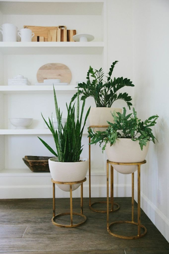 Plant Stand Ideas to Fill Your Living Room Beautiful 17 Best Ideas About Plant Stands On Pinterest