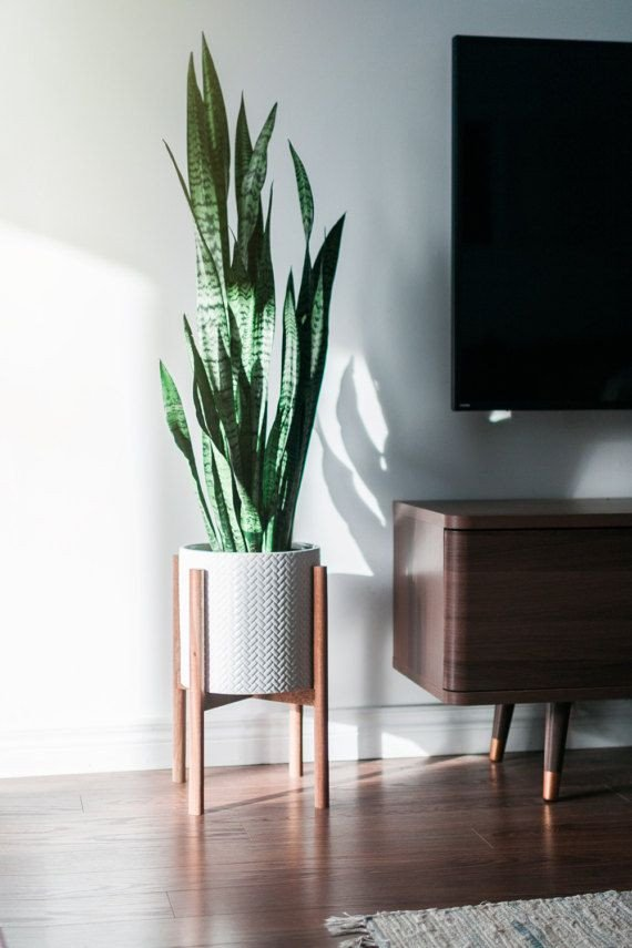 Plant Stand Ideas to Fill Your Living Room Beautiful Mid Century Modern Plant Stand Hand Made In Canada Walnut Wood Retro Home Decor