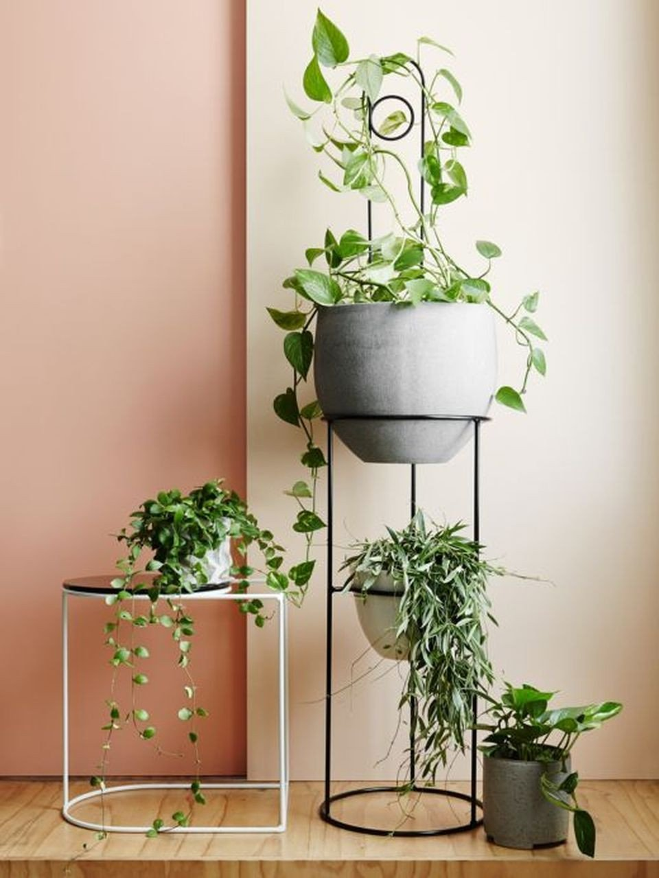 Plant Stand Ideas to Fill Your Living Room Elegant Cool Plant Stand Design Ideas for Indoor Houseplants