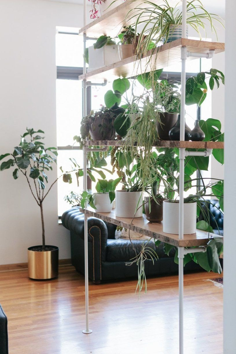 Plant Stand Ideas to Fill Your Living Room Elegant Sam & Linsey's thoughtful Chicago Home Apartment Interiors