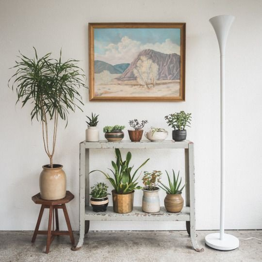Plant Stand Ideas to Fill Your Living Room Inspirational Table Be Es Plant Stand Apartment Decorating Ideas Living Room Decor On A Bud