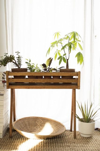Plant Stand Ideas to Fill Your Living Room Lovely Best 25 Plant Stands Ideas On Pinterest