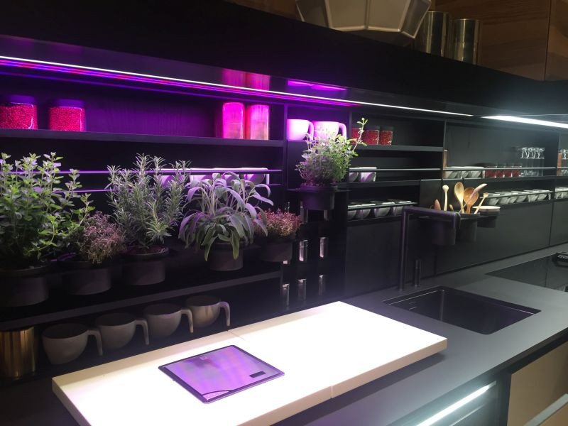 Purple and Black Kitchen Decor Lovely Under Cabinet Led Lighting Puts the Spotlight the Kitchen Counter