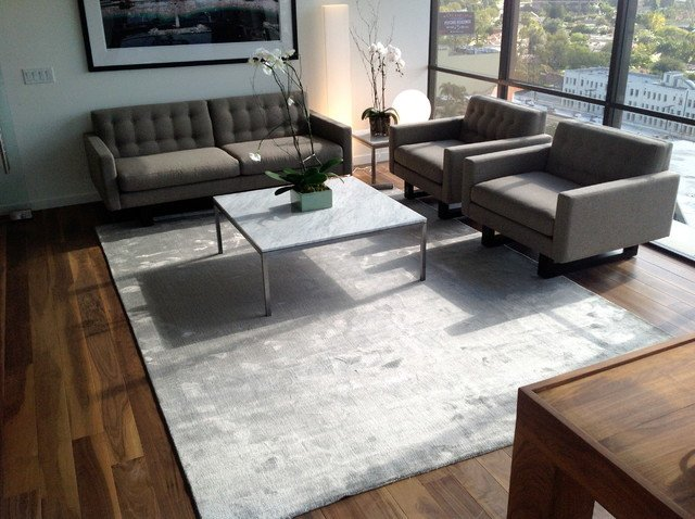 Rugs Contemporary Living Room Inspirational Happy Customers Contemporary Living Room Los Angeles by Modern Rugs La
