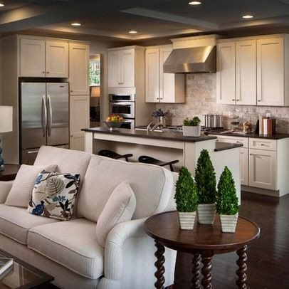 Small Kitchen Living Room Ideas Unique Houzz Home Design Decorating and Remodeling Ideas and Inspiration Kitchen and Bathroom