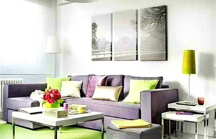 Small Rectangle Living Room Ideas Inspirational Small Rectangular Living Room Layout Rectangle Furniture Narrow Fresh Template for Family