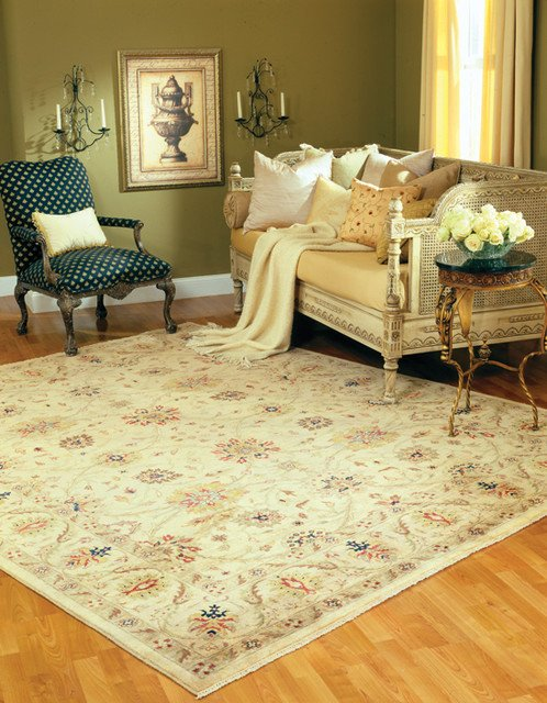 Traditional Living Room Rugs Inspirational Living Room area Rug