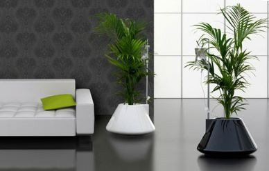 Using Plants In Home Decor Awesome How to Use Plants In Home Decor Free Blog Free Blog