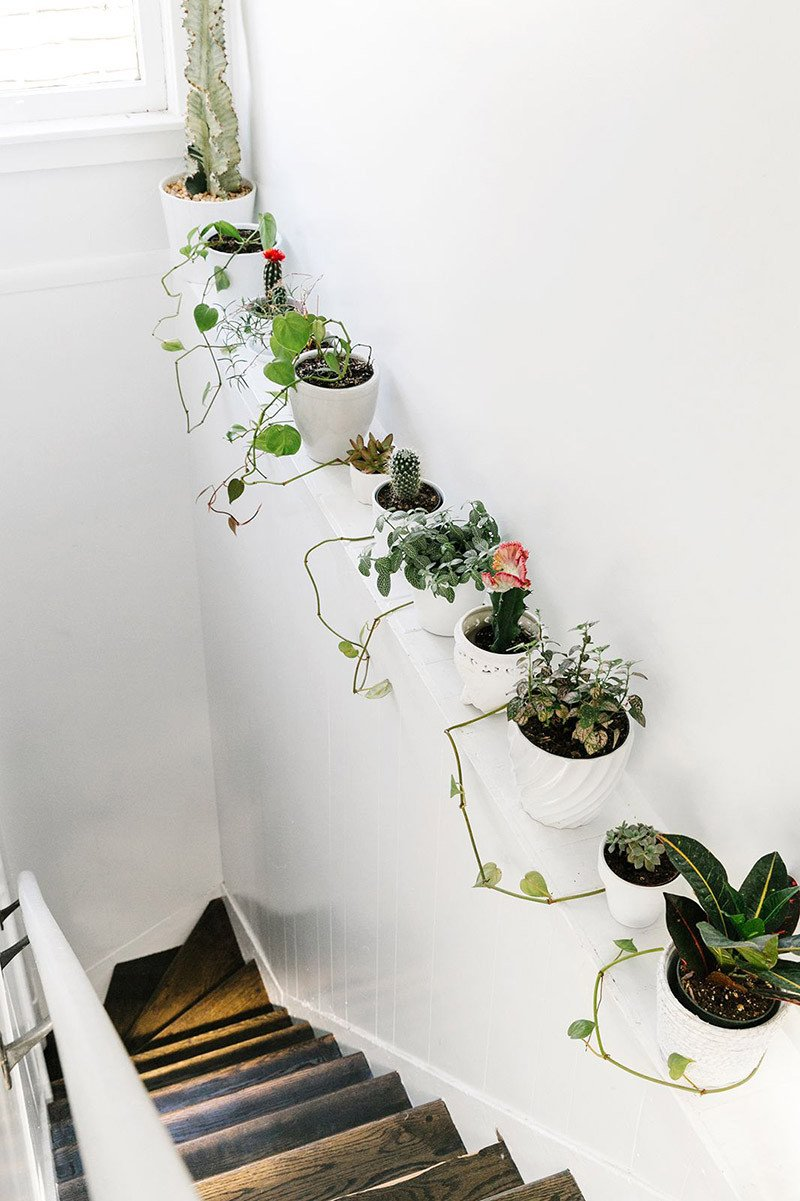 Using Plants In Home Decor Fresh 33 Creative Ways to Include Indoor Plants In Your Home
