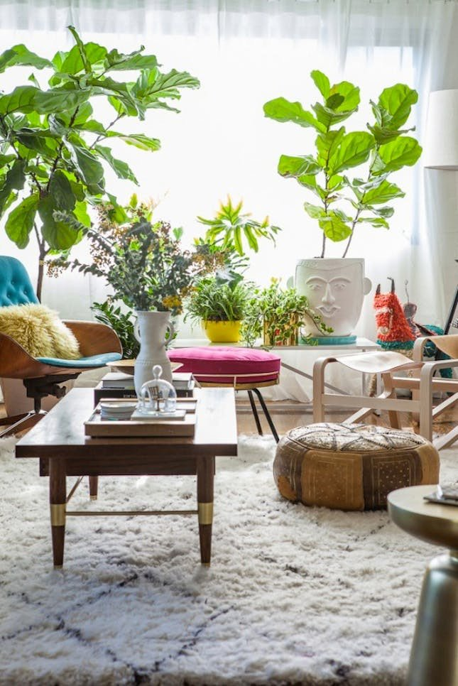Using Plants In Home Decor Luxury 25 Unexpected Ways to Decorate with Plants