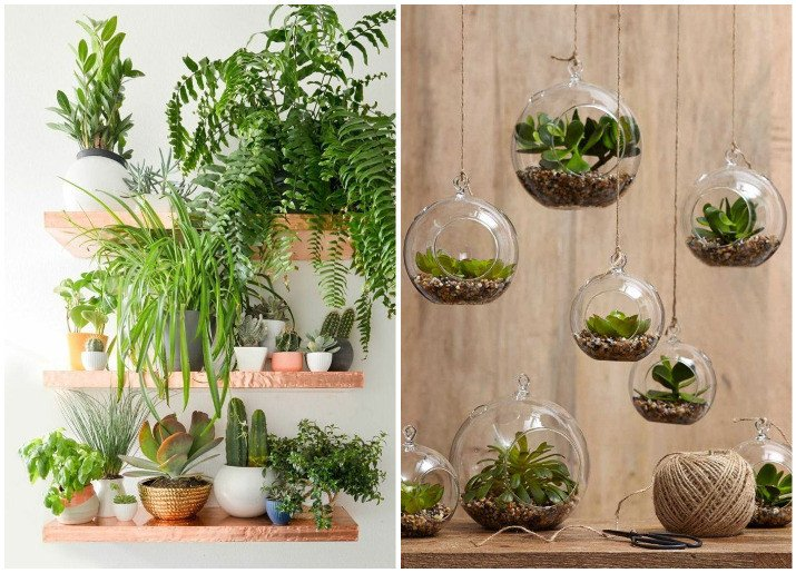 Using Plants In Home Decor New Decorate Your Home with Indoor Plants 5 Easy Home Decor Ideas