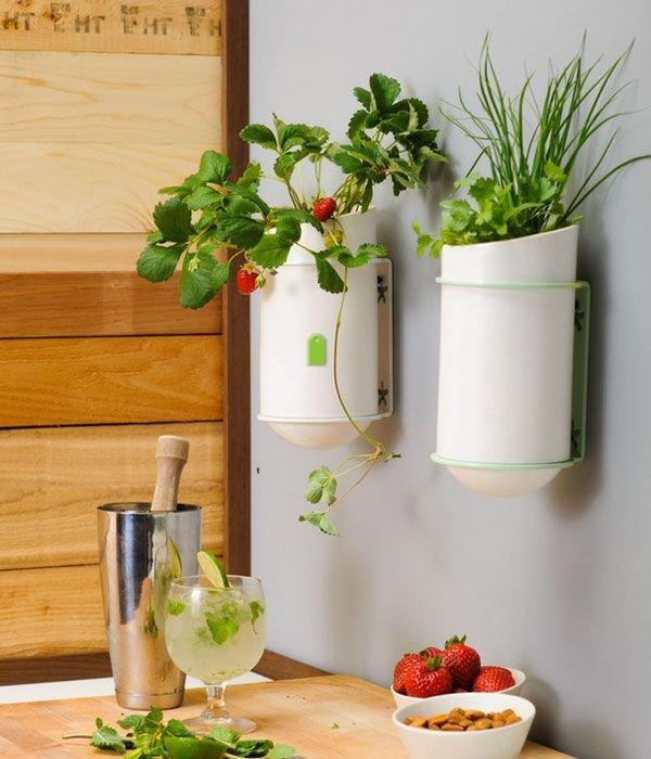 Wall Art Decor for Kitchen Unique Unique Kitchen Wall Décor Ideas
