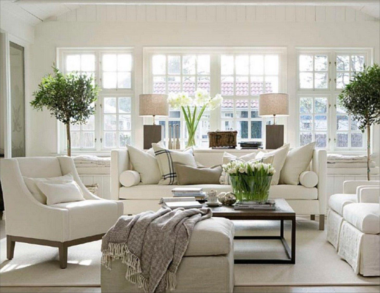 White Traditional Living Room Unique 22 Cozy Traditional Living Room Indoor Plant Modern White Decor Whg