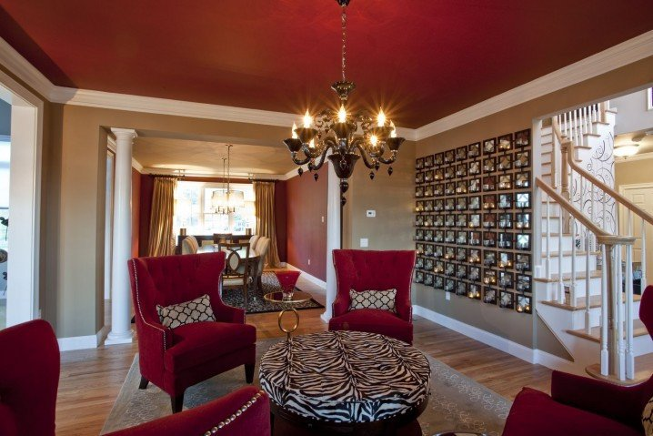 Zebra Decor for Living Room Fresh Dramatic Zebra Living Room Decoration Ideas