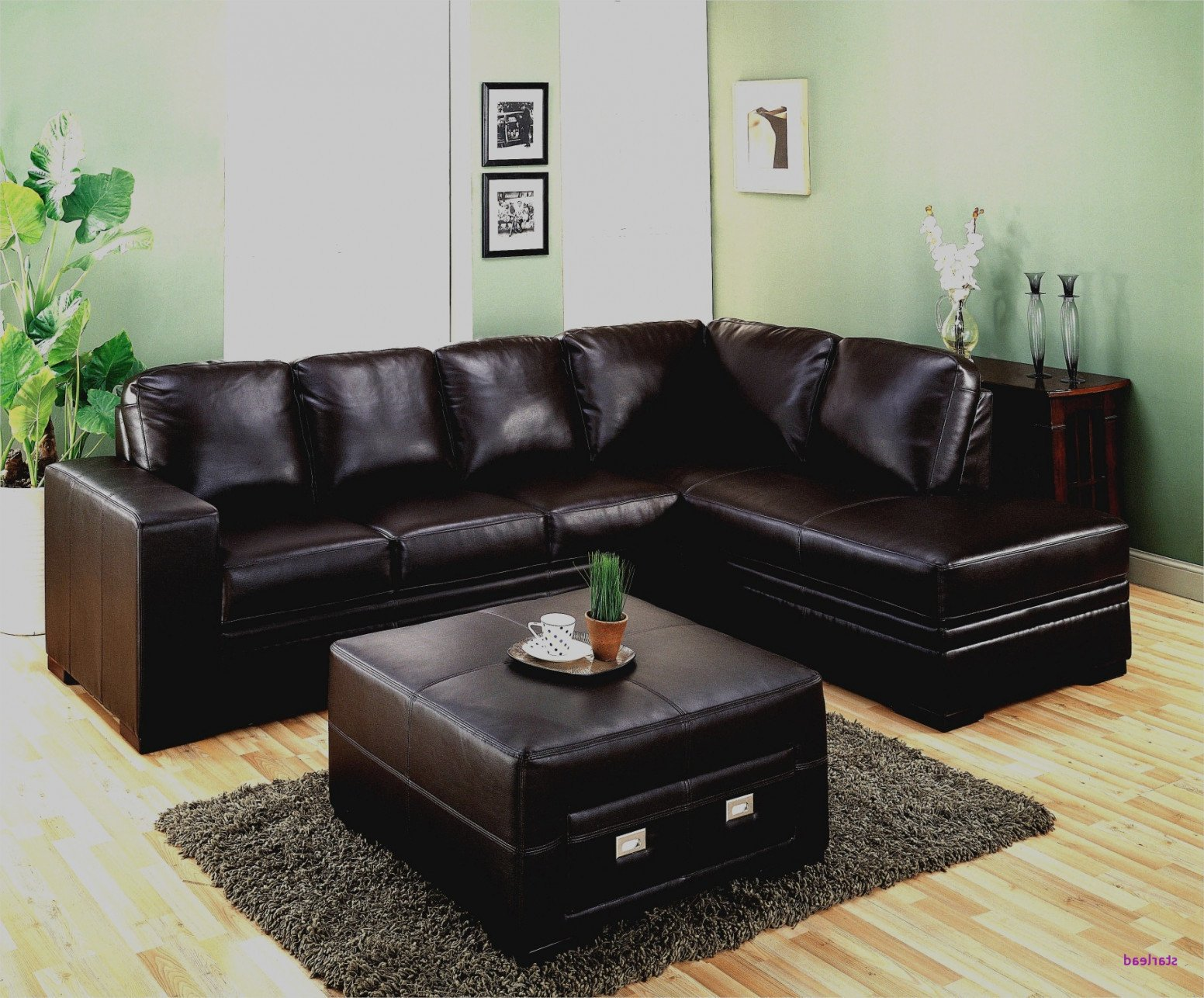 Black Leather Bedroom Set Best Of 30 Best Couches for Dark Hardwood Floors