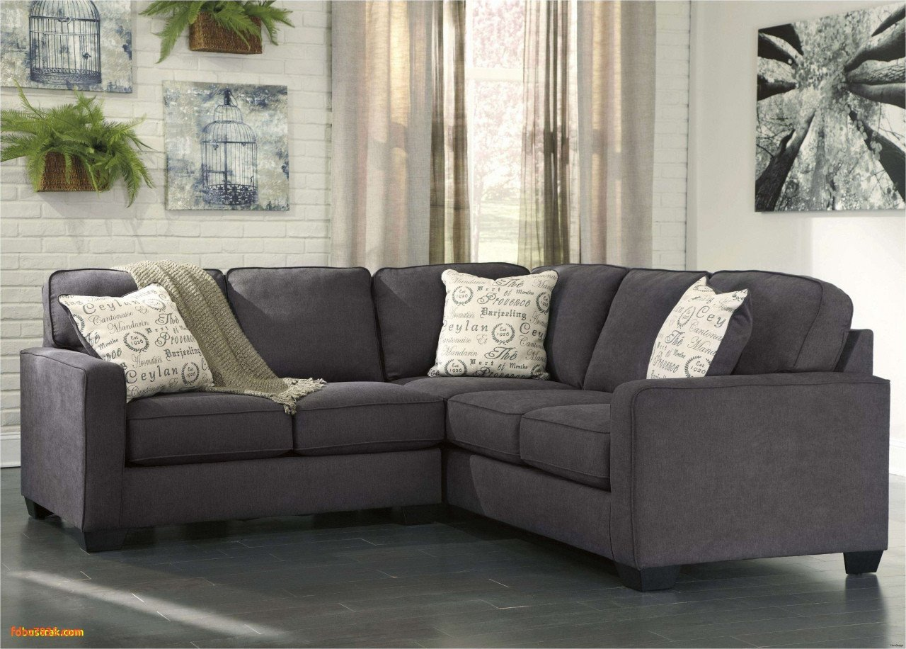 Mini Couch for Bedroom Fresh Sectional sofa Bed Samtcouch Einzigartig Suche sofa Tantra