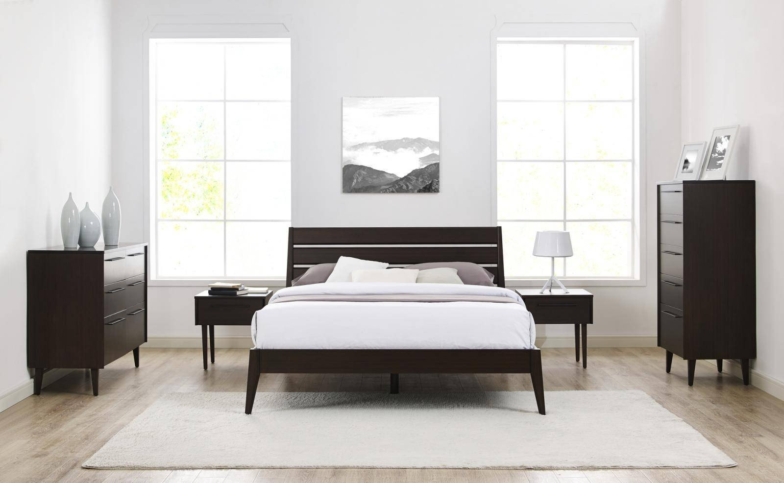 Used Queen Bedroom Set Lovely Bamboo Queen Bedroom Set 5pcs W Chest Mocha Modern Sienna by